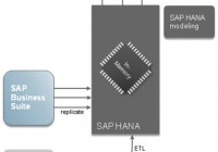 SAP Hana: Details of High Performance Analytical Appliance
